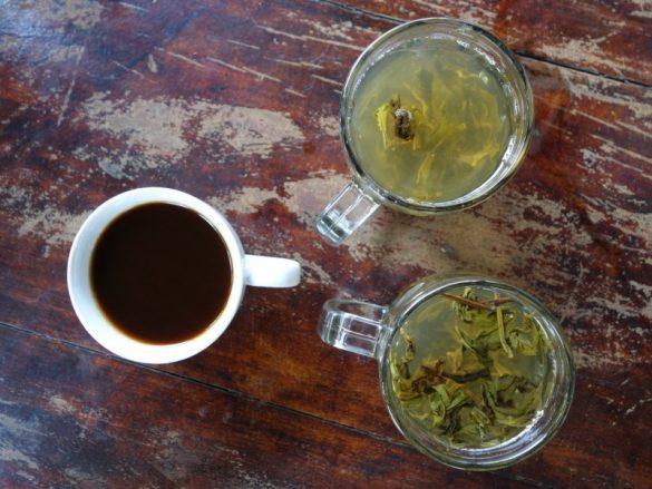 Green tea, black coffee & weight loss