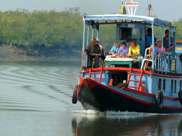 Sundarbans re-opened for tourists
