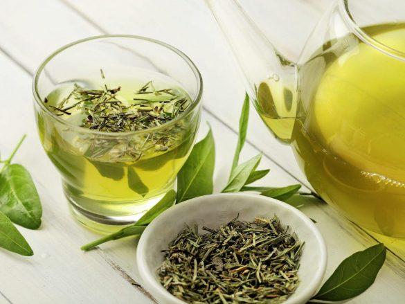 green tea beauty benefits