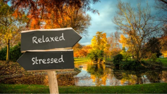 Anxiety management tips fi